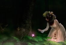 Photo of Papardes zieda meklēšana